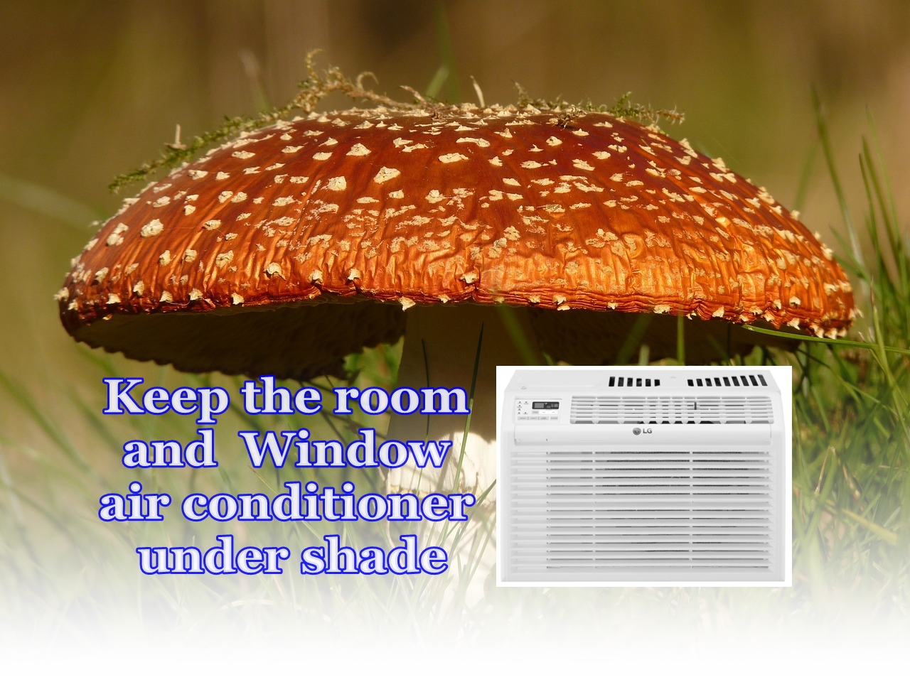what size window air conditioner do I need-shade